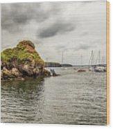 Stony Cove, Ireland Wood Print