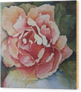 Stop And Smell The Roses Wood Print
