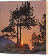Stop Right Here - Rocky Mountain Np - Sunrise Wood Print