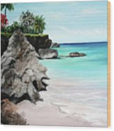 Store Bay Tobago Wood Print