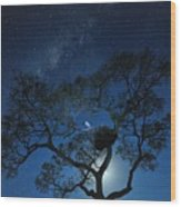 Stork Wood Print
