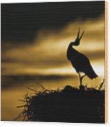 Stork In Sunset Wood Print