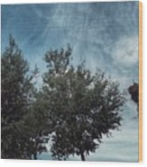 Storks Wood Print