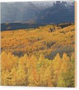 Storm At Ohio Pass During Autumn Wood Print