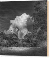 Storm Beyond The Meadow Wood Print