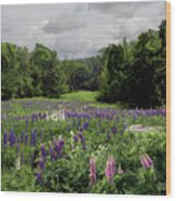 Storm In The Lupine Wood Print