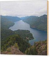Storm King Trail Six Wood Print