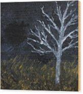 Storm Night Wood Print