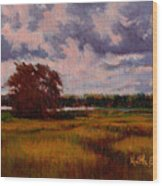 Storm Over Marshes Wood Print