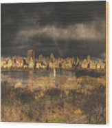 Storm Over The Park Wood Print