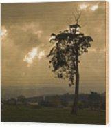 Storm Over Wilmot Wood Print