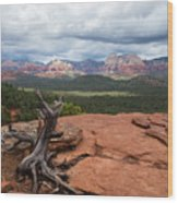 Storm View Wood Print