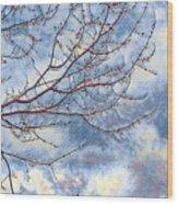 Storm Watch Wood Print