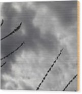 Stormy Clouds Wood Print