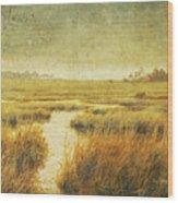 Stormy Marsh Wood Print