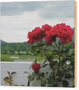 Stormy Roses Wood Print by Valeria Donaldson