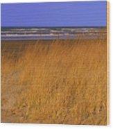 Stormy Walk On The Beach Ix Long Beach Washington Wood Print