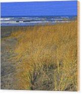 Stormy Walk On The Beach V Long Beach Washington Wood Print