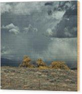 Stormy Wet Wood Print