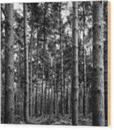 Straight Up Wood Print