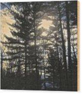 Straining To Win The Sky Wood Print