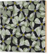 Strange Flower Wood Print