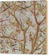 Strange Forest With Small Birds Wood Print