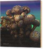 Strange Mushrooms 2 Wood Print