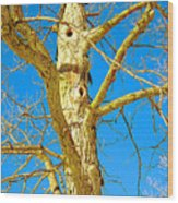 Strange Tree Wood Print