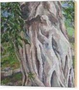 Strangler Fig Wood Print