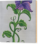 Strangler Hibiscus Wood Print