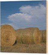 Straw Bales On A Hog Farm In Kansas Wood Print