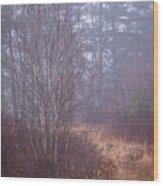 Straw Path Wood Print