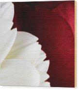 Strawberry And Cream Wood Print