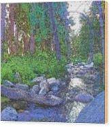 Strawberry Creek 1859 Wood Print