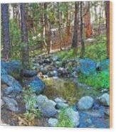 Strawberry Creek 1884 Wood Print