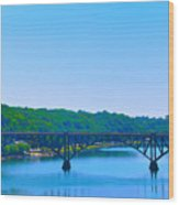 Strawberry Mansion Bridge From Laurel Hill Wood Print