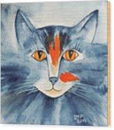 Stray Cat Wood Print