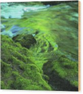 Stream Above Whitehorse Falls Wood Print