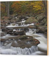 Stream At Ricketts Glen Wood Print by Robert Wirth