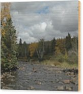 Stream At Tettegouche State Park Wood Print