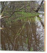 Stream Entering Mississippi River Wood Print
