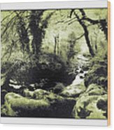 Stream In An Ancient Wood Wood Print
