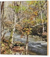 Stream In An Autumn Woods Wood Print