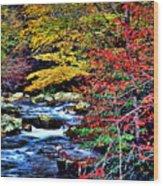 Stream In Autumn Wood Print