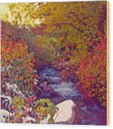 Stream In Autumn  Wood Print