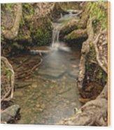 Stream In Judy Woods Wood Print