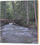 Stream In The Forest Wood Print