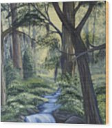 Stream In The Low Country Wood Print