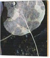 Stream Leaf Wood Print
